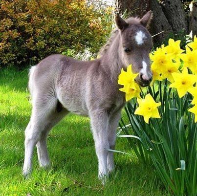 Ben jij klaar voor de lente?