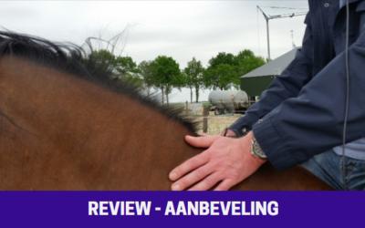Review Demusa Coaching & Training / Coach Denise Munster / paardencoaching