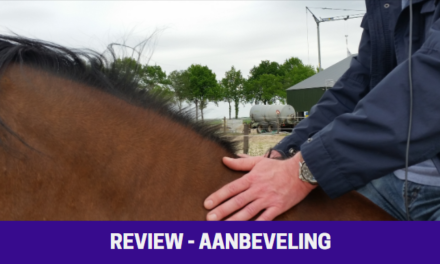 Review Demusa Coaching & Training / Coach Denise Munster / paardencoaching