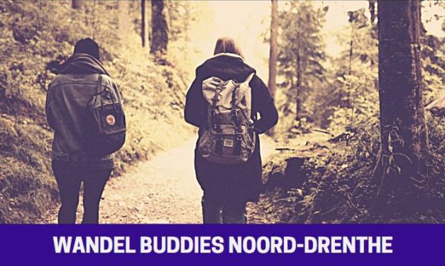 Start Wandel Buddies