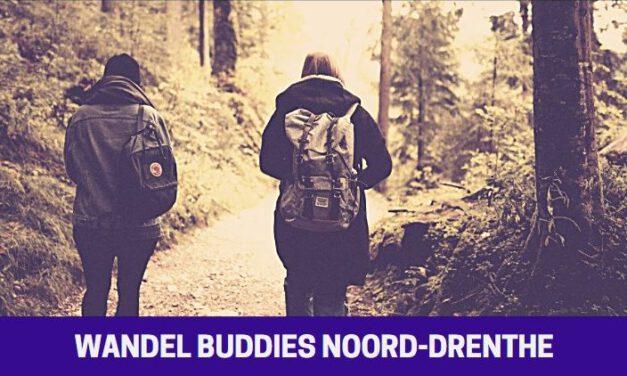 Start Wandel Buddies